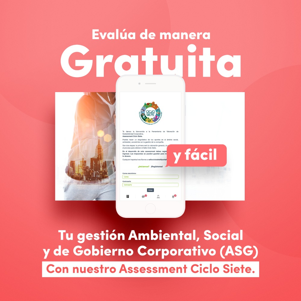 Assessment Ciclo Siete